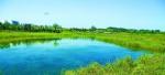 北京市今年再添2200公顷湿地景观 - 林业网
