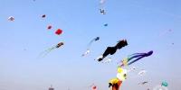 2018年北京国际风筝节国际风筝邀请赛暨京津冀风筝联谊赛举行 - 体育局