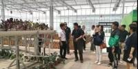 京津冀集约化育苗技术调研,启动啦! - 农业局