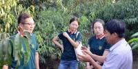 农博士在线 |河南南召:产业发展农博士来帮忙 - 农业大学