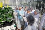 国际化培养提升项目|农学院、生物学院赴荷兰瓦赫宁根大学暑期交流活动圆满结束 - 农业大学